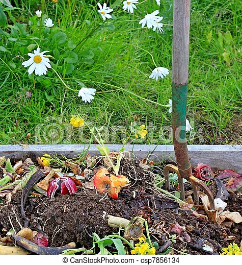 Compost pile with daisies - csp7856134