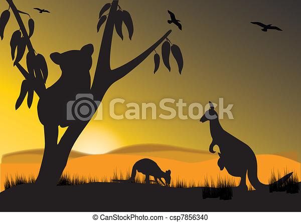 koala kangaroo - csp7856340