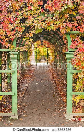pergola in autumn park - csp7863486