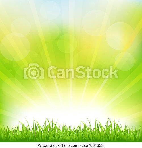 緑の草, sunburst, 背景 - csp7864333
