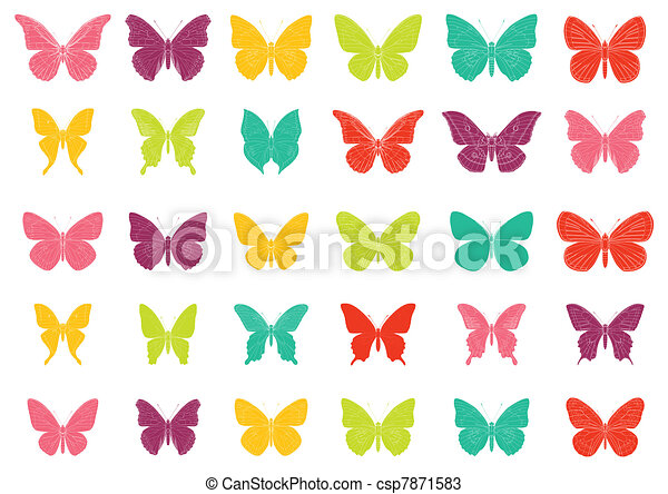 Colorful tropiccal butterfly - csp7871583
