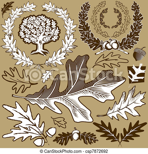 Oak Leaf Collection - csp7872692