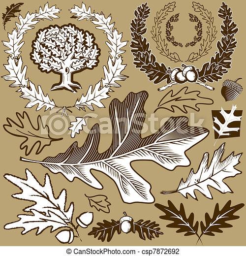 Oak Leaf Collection - csp7872692