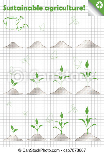 Branch of sprout with green leaves - csp7873667
