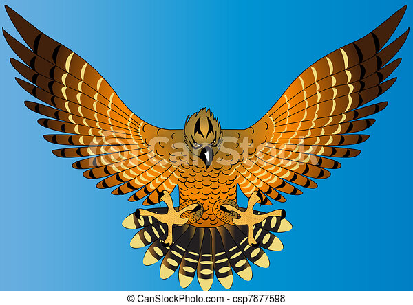 flying powerful eagle on turn blue background - csp7877598