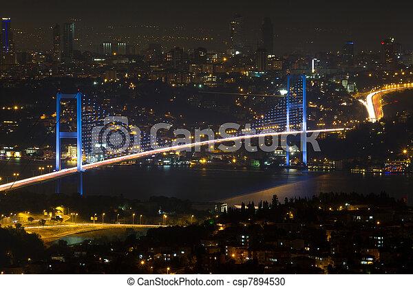 Istanbul Bosphorus Bridge from Camlica Hill - csp7894530