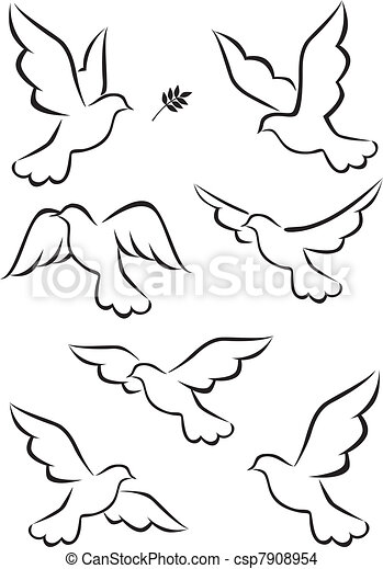 Dove - csp7908954