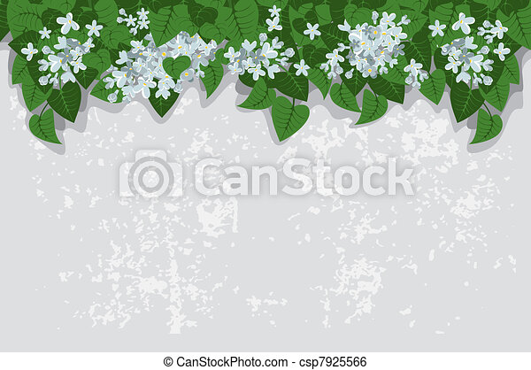 Grunge background with white lilacs - csp7925566