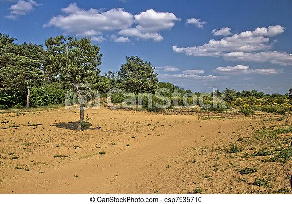 Spring time scenery landscape in Croatian desert - csp7935710