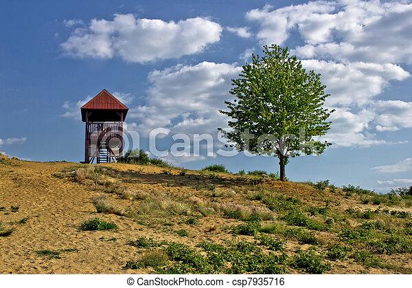 Desert scenery landscape in spring time - csp7935716