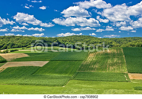 Beautiful green scenery landscape in spring time IV - csp7938902