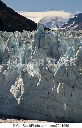 Alaska, Glacier Bay - csp7941960