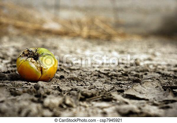 Rooten food on dry soil - csp7945921