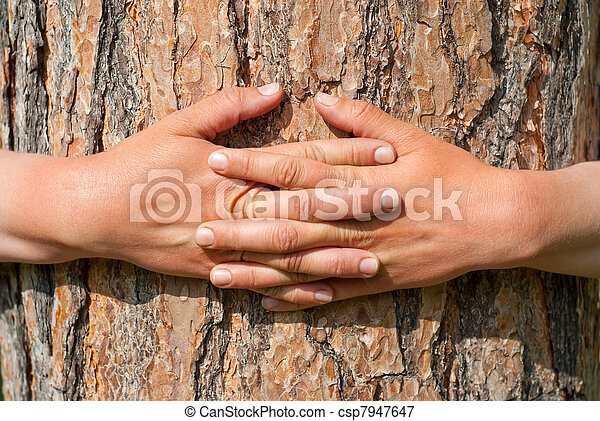 arms wrapped around a tree - csp7947647