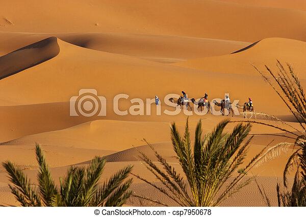 Desert - csp7950678