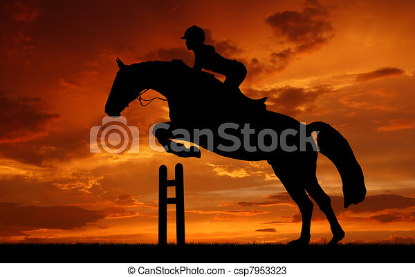 rider on a jumping horse - csp7953323