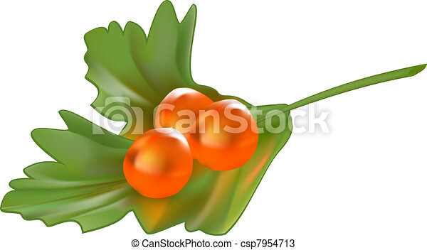 Red caviar on a piece of parsley  - csp7954713