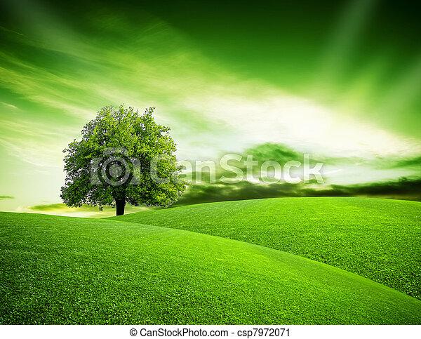 Eco green planet - csp7972071