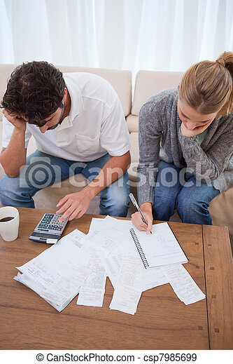Portrait of a couple doing their accounting - csp7985699