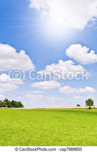 agriculture landscape - csp7989850