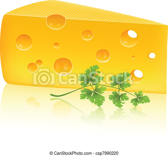 Cheese and parsley - csp7990220