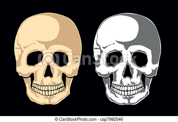 Human skull on black. Separate laye - csp7992546