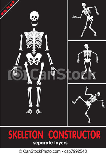 Human skeleton. Bones on separate l - csp7992548