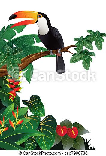 Toucan bird - csp7996738