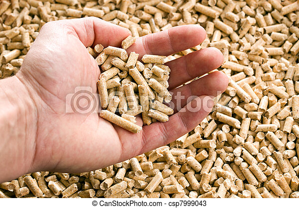wooden pellet .ecological heating - csp7999043