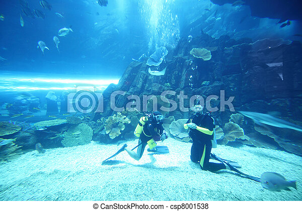 two scuba divers in wet suits diving in big aquarium with fishes - csp8001538