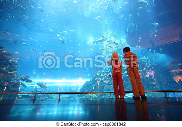 little boy and girl standing in underwater aquarium tunnel, view from back - csp8001842