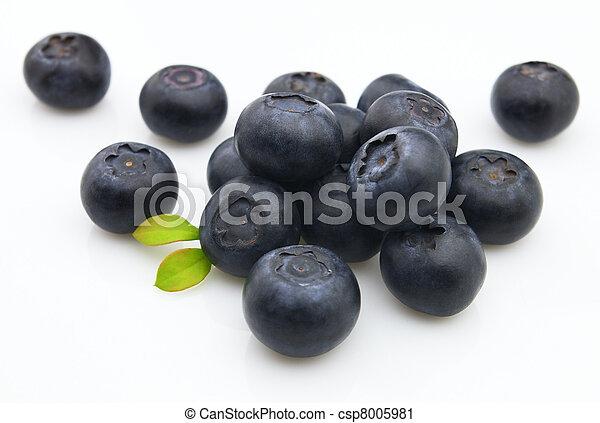 Fresh blueberry  - csp8005981