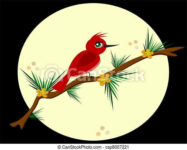 Red Bird on a Pine Branch - csp8007221
