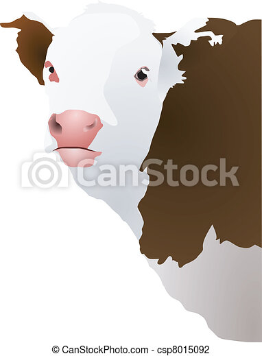 Vector illustration of a cow's head - csp8015092