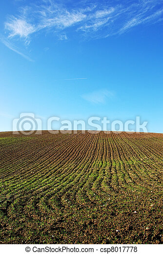 ploughed field and blue  sky - csp8017778