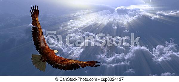 tyhe, ワシ, 飛行, 雲, の上 - csp8024137