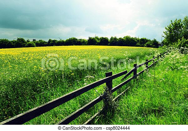 Agriculture - csp8024444
