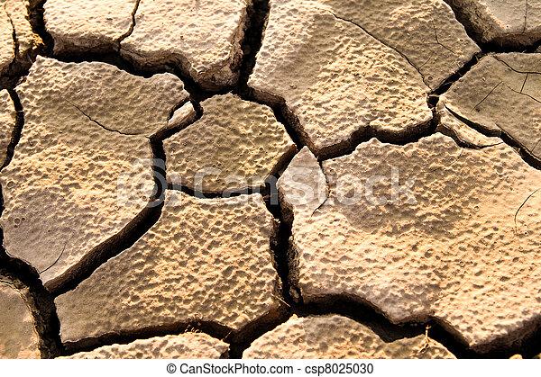 Cracked lifeless soil - csp8025030