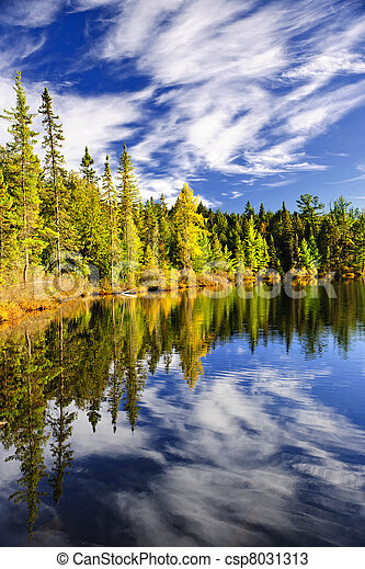 Forest and sky reflecting in lake - csp8031313