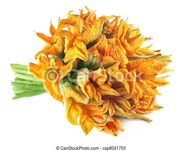 Edible pumpkin flower - csp8031703