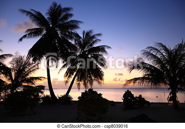 Dream Beach after Sunset at Manihi Atoll in the South Pacific with Coconut Trees - csp8039016