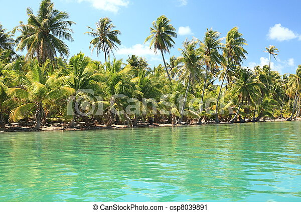 Dreamlike Island in the South Pacific with Coconut Trees and Turquoise Water.   - csp8039891