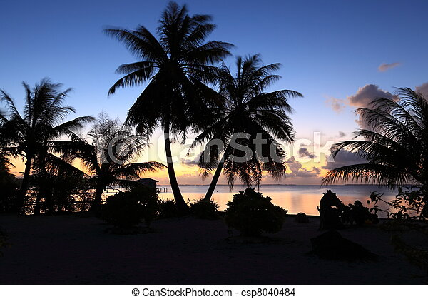 Dream Beach after Sunset at Manihi Atoll in the South Pacific with Coconut Trees  - csp8040484