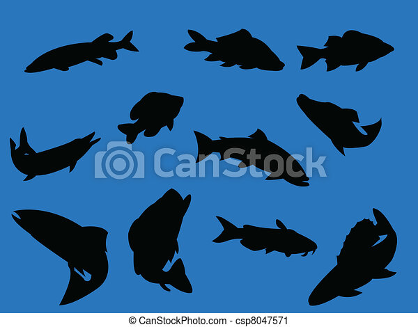 Fish on blue background - csp8047571