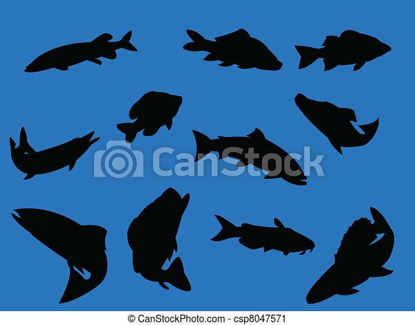 Fish on blue background - csp8047571