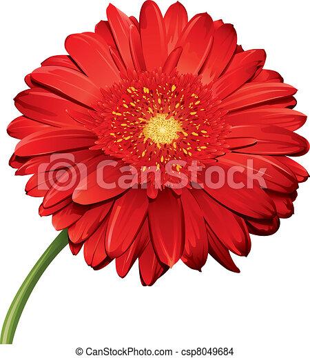 Detailed Flower - csp8049684