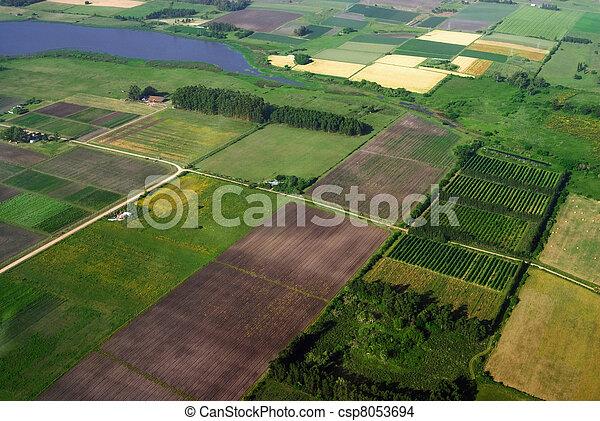 verde, agricultura, vista, aéreo, campos - csp8053694