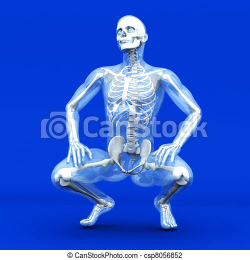 Anatomy Visualization - csp8056852