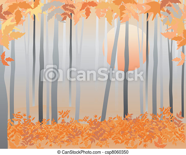 autumn woods - csp8060350
