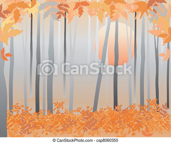 autumn woods - csp8060350